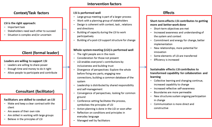 Success factors and effects of Large Scale Interventions